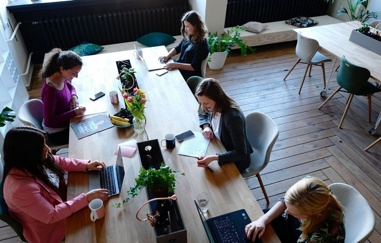 Women coworking up angle 1